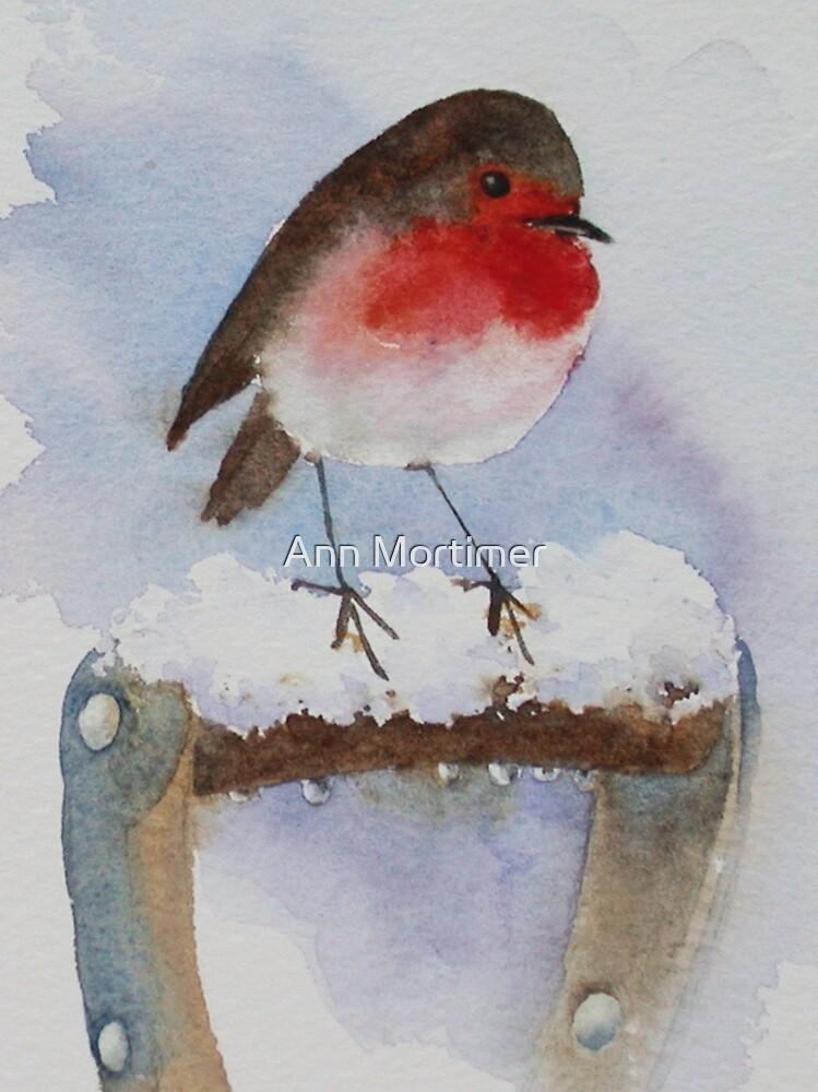 Winter robin  by Ann Mortimer