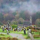 Graveyard shift by DES PALMER