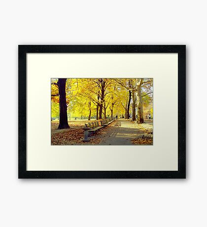 Autumn Afternoon in Central Park  Framed Print