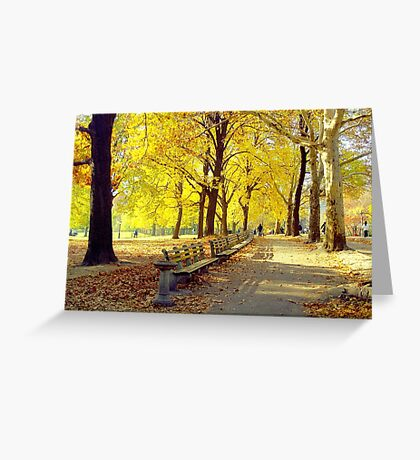 Autumn Afternoon in Central Park  Greeting Card