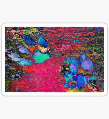 Paw Prints Colour Explosion Sticker