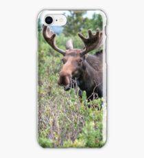Munching Moose iPhone Case/Skin