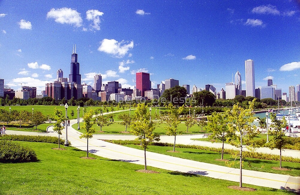 Tree Lined View with Chicago Skyline  by Alberto  DeJesus