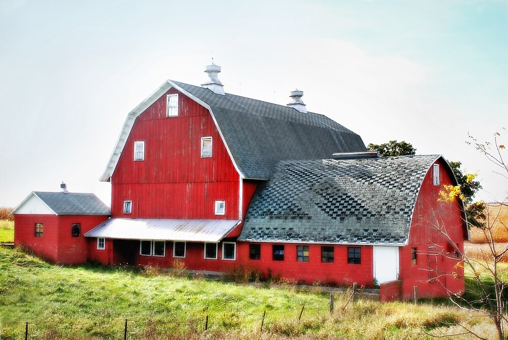 Rural Red by Nadya Johnson