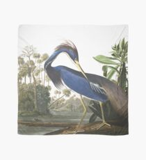 Tricolored Heron - John James Audubon Scarf
