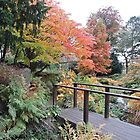 Autumn: Bridge At Botanical Gardens by CreativeEm
