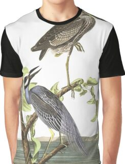 Yellow-crowned Night-Heron - John James Audubon Graphic T-Shirt