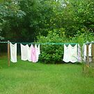 Rainy Day Wash Day by Vivian Eagleson