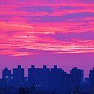 Dusk in New York City  by Alberto  DeJesus