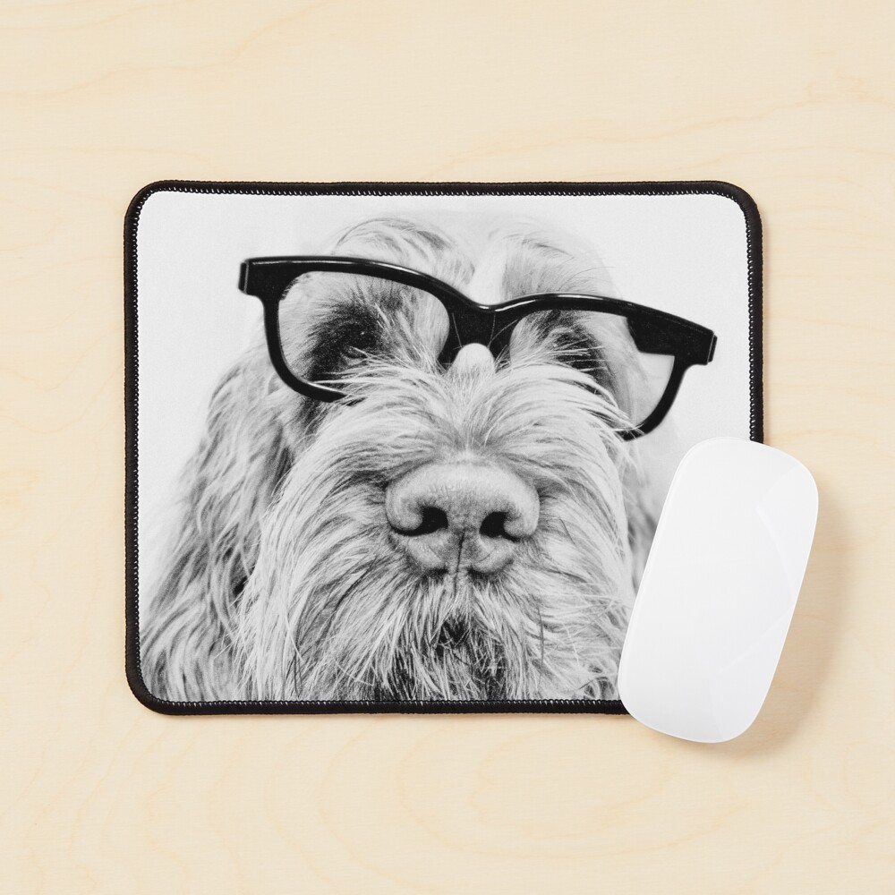 Intelligent friend Spinone Mouse Pad