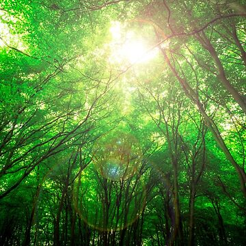 Endless Green Forest of Dreams by NeonAbstracts