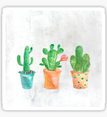 Three Green Cacti Watercolor White Sticker