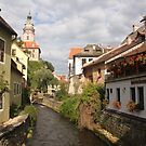 Cesky Krumlov Old Town and Castle Tower by Elena Skvortsova