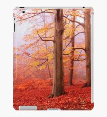 Burnham Beeches. November iPad Case/Skin