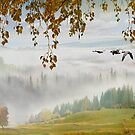 Flying South by Igor Zenin