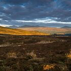Looking to Schehallion, Perthshire Scotland by Cliff Williams