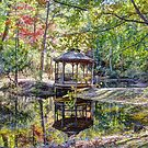 The Gazebo In The Forest by Savannah Gibbs