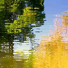 Upon Reflection ! by Elfriede Fulda