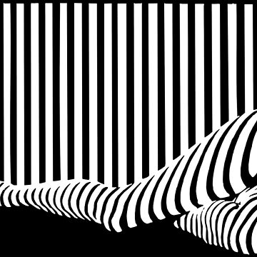 BLACK&WHITE by xedex