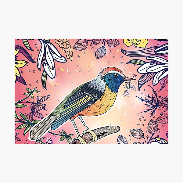 Beautiful illustration of multicolored bird with flowers on pink background Photographic Print