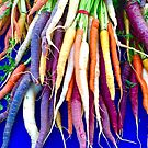 Colorful Carrots by Christine  Wilson