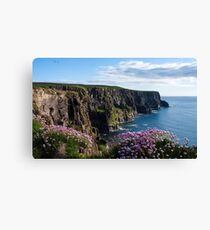 Sea Pink On The Cliffs Canvas Print