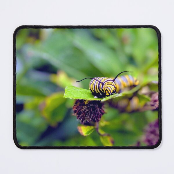 The Royal Monarch Mouse Pad