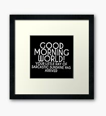 Little ray of sarcasm  Framed Print