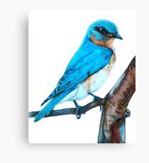 Faith is a Bluebird Canvas Print