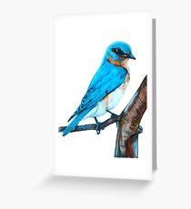Faith is a Bluebird Greeting Card