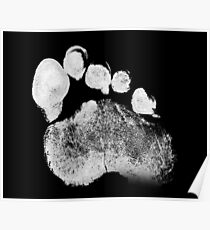 Paw Poster
