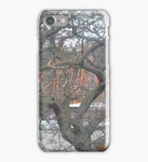 Austrian winter tree iPhone Case/Skin