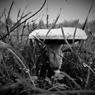 Shroom in the Dew B/W by EvePenman