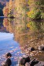 Swirl at Loch Faskally, Perthshire Scotland by Cliff Williams