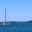 Nelson Bay by Sharon Brown