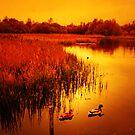 AUTUMN LAKE by leonie7