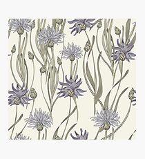 seamless pattern with cornflowers Photographic Print