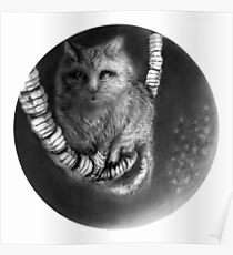 CIRCLE ART - CAT WALKS ON WIRE Poster