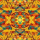 Fur kaleidoscope by Liz Plummer