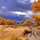 High Desert Autumn II by SB  Sullivan