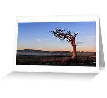 A Tree, Boughing to Nature Greeting Card