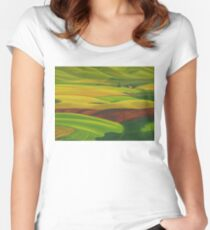 Red barn - acrylic on board Women's Fitted Scoop T-Shirt