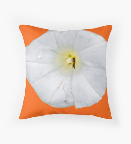 white flower and insect  Throw Pillow
