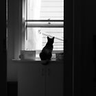 Watching by Jeanette Varcoe.