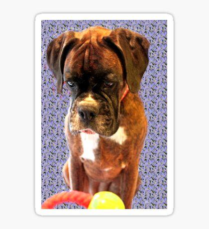 Feeling Blue - Boxer-Hunde-Serie Sticker