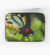 Cairns Birdwing Laptop Sleeve