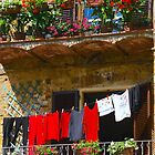 Wash Day in Montepulciano by Barbara  Brown