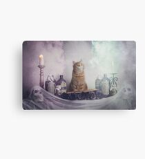 Ginger Spells Canvas Print