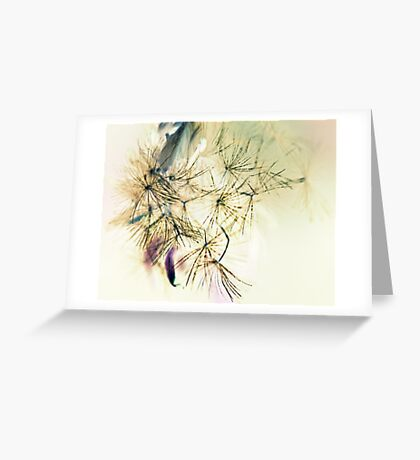 Whispers  In The Wind - Softly, Softly - Greeting Card