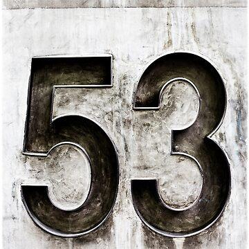 53 by raevan